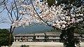 Asakura Akizuki Junior High School.jpg