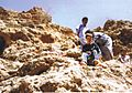 Assads2.jpg