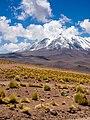 Atacama-31 (26455686456).jpg