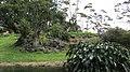 Auckland Zoo, North Island - panoramio (2).jpg