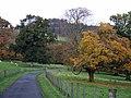 Autumn at Ardgowan - geograph.org.uk - 1546708.jpg