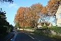 Autumn colour in Standlake - geograph.org.uk - 1589778.jpg