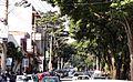 Avenida José Paulino ex Rua do Comércio.jpg