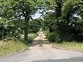 Avenue to Bradholme - geograph.org.uk - 194688.jpg