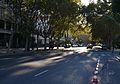 Avinguda de Blasco Ibàñez, València.JPG