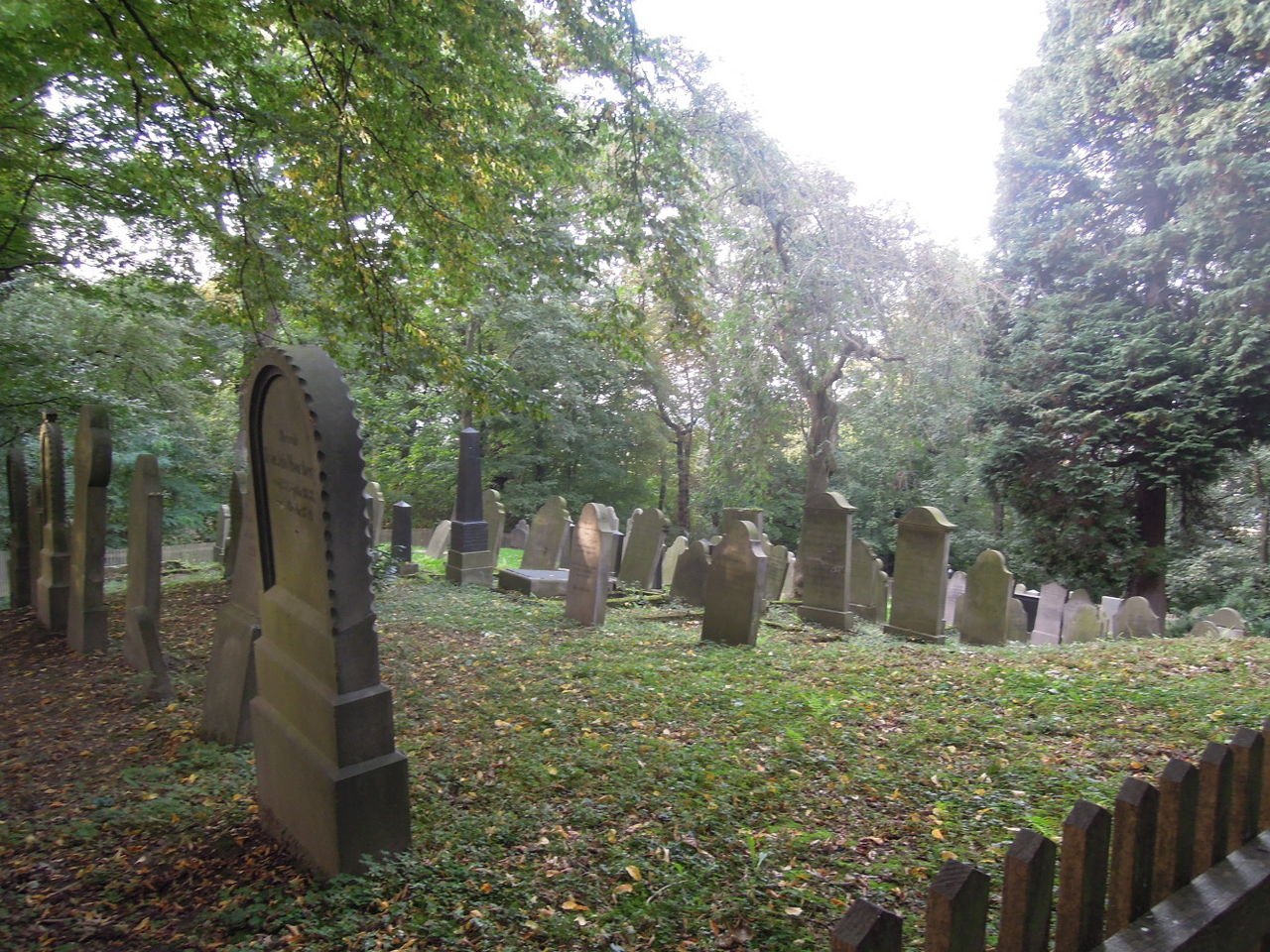 Bückeburg Grabsteine jüdischen Friedhof.jpg
