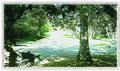 BALNEÁRIO CAMBORIÚ (Parque Ambiental), Santa Catarina, Brasil by Maria de Lourdes Dalcomuni (Ude) - panoramio (1).jpg