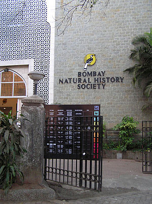 Bombay Natural History Society - Hornbill House, the head office of the Bombay Natural History Society.