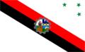 Bandera de Minga Guazú.png