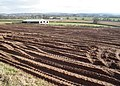 Bare field, near Sampford Peverell - geograph.org.uk - 1175697.jpg