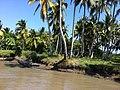 Barranquilla - Río Magdalena - panoramio (41).jpg