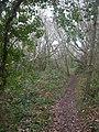 Barton Common, woodland - geograph.org.uk - 1085705.jpg