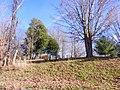 Bates Cemetary - panoramio.jpg