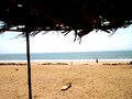 Beach at Arabian Sea.png