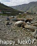 Beautiful Gilgit Baltistan.jpg