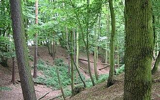 Beech Bottom Dyke - Image: Beech Bottom Dyke (2)