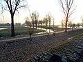 Bei Zons - panoramio (1).jpg