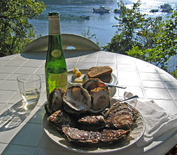 Belon oysters at Belon river, France.jpg