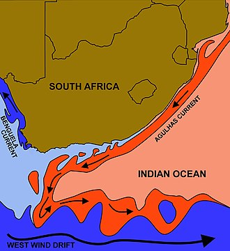 "Benguela Current - The courses of the  warm Agulhas current (red) along the east coast of South Africa, and the cold Benguela current (blue) along the west coast, originating in the Indian Ocean and Atlantic Ocean respectively. Note that the Benguela current does not originate from Antarctic waters in the South Atlantic Ocean, but from upwelling of water from the cold depths of the Atlantic Ocean against the west coast of the continent. The two currents do not ""meet"" anywhere along the south coast of Africa."