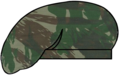 Beret camobrazilianjungle.png