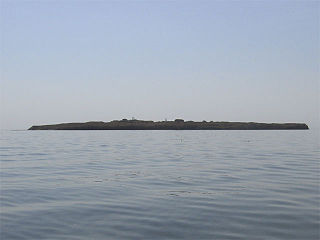 island in Ochakiv Raion, Ukraine