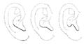 Bertillon - Identification anthropométrique (1893) 061.2 n&b.png