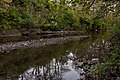 Blacklick Woods-Blacklick Creek 2.jpg