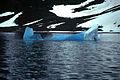 Blauwe ijsberg in Svalbard.jpg