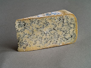Blue cheese - Bleu de Gex, a creamy, semi-soft blue cheese made in the Jura region of France