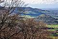 Blick vom Großen Bosler auf die Limburg (Ostseite).jpg