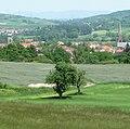 Blick von der Anhöhe über Eisenberg mit beiden Kirchen - panoramio.jpg