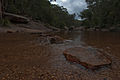 Blue Mountains National Park (6206967602).jpg