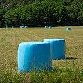 Blue silage bales in Biberg 2.jpg
