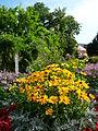 Blumenbeet HD.JPG
