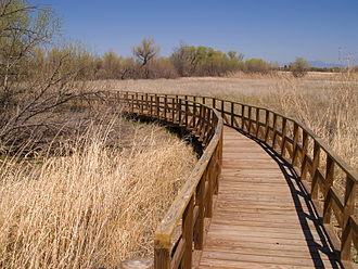 Arivaca, Arizona - Boardwalk in the Arivaca Cienega.