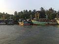 Boats in Thirumullaivasal.jpg