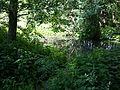 Boberg Auslauf by Chillinggreen.jpg