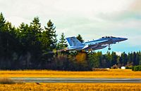 Boeing EA-18G Growler in Afterburner Taking Off from Naval Outlying Field Coupeville.JPG