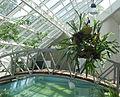 Botanical garden, Minsk 202.jpg