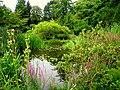 Botanischer Garten der TU Darmstadt - IMG 7047.JPG