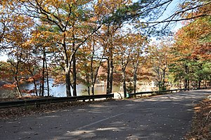Breakheart Reservation - Breakheart's swimming area beyond the loop roadway
