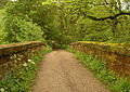 Bridge over the Churnet - geograph.org.uk - 1326158.jpg