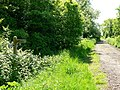 Bridleway, near Hannington Wick, Swindon - geograph.org.uk - 441150.jpg