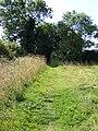 Bridleway between Transport Lane and Hales Green - geograph.org.uk - 1744502.jpg