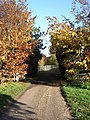 Bridleway near Crave Hall on Icknield Way - geograph.org.uk - 281057.jpg