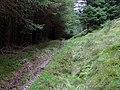 Bridleway to Abergwesyn, Tywi Forest, Powys - geograph.org.uk - 1528910.jpg