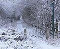 Bridleway to Braunstone - geograph.org.uk - 1166042.jpg