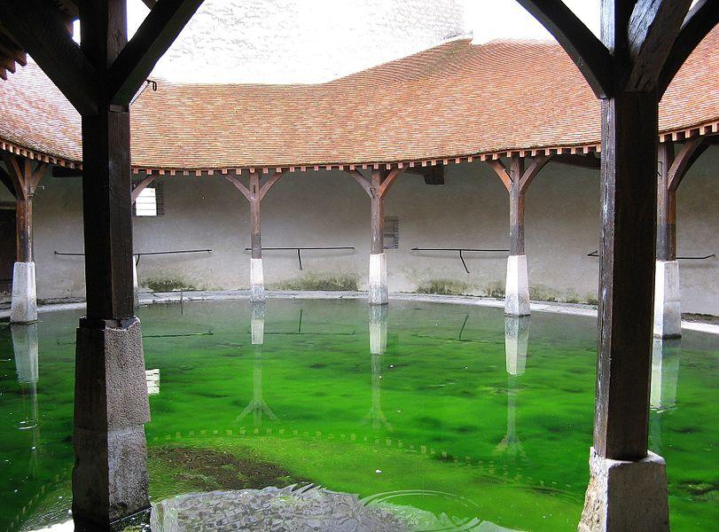 Brienon-sur-Armançon, le lavoir du 18ème siècle en 2008