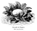 Brocoli de Pâques Vilmorin-Andrieux 1904.png
