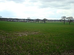 Bromley Common - geograph.org.uk - 1224595.jpg